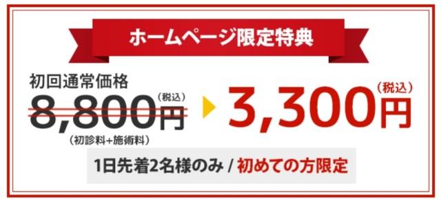 初回通常価格8,800円(税込)が3,300円(税込)